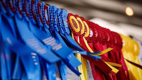 horse-show-ribbons.jpg