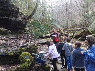 Pearson's Falls Hike!
