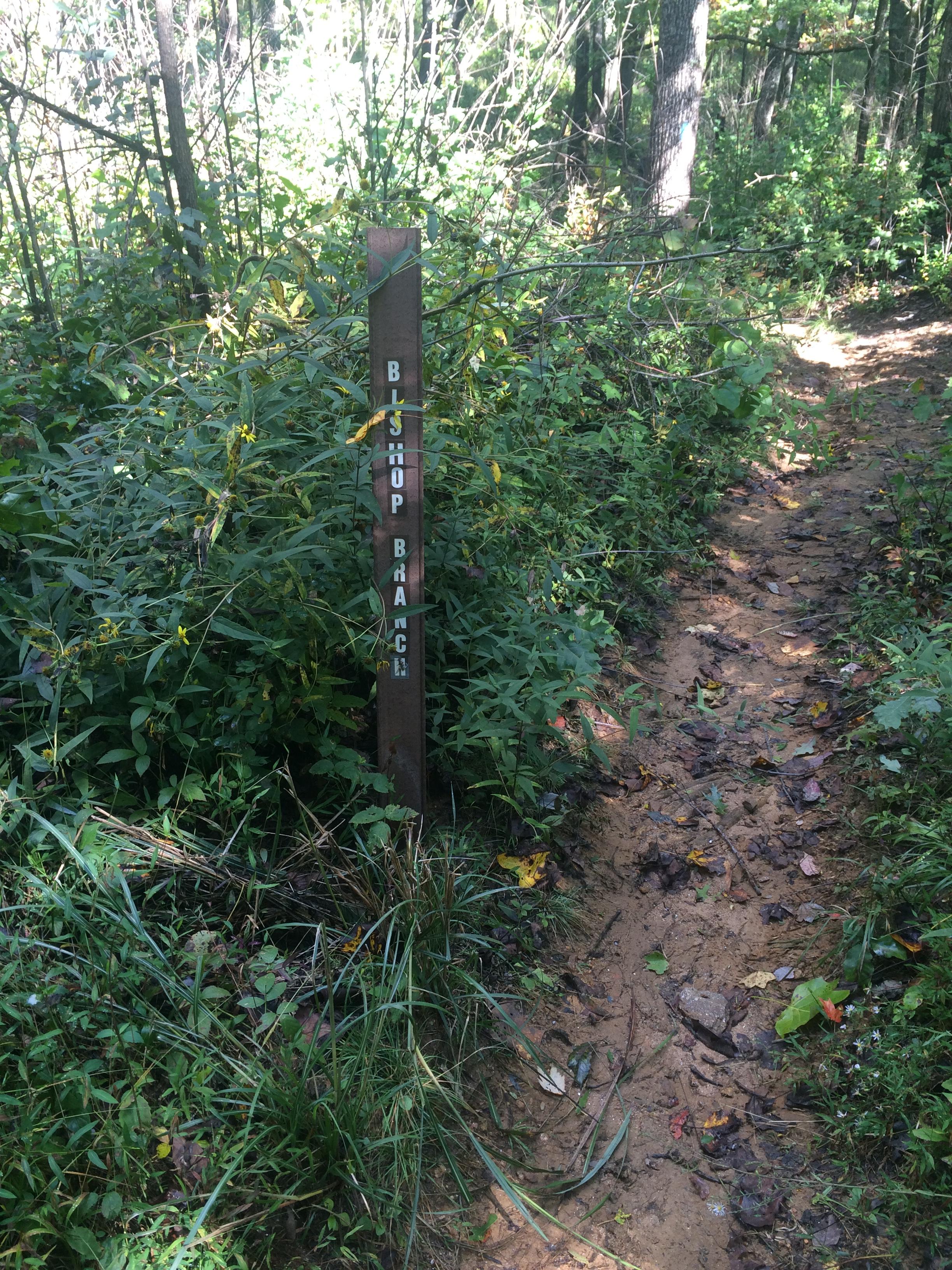 Bishop Branch Trail