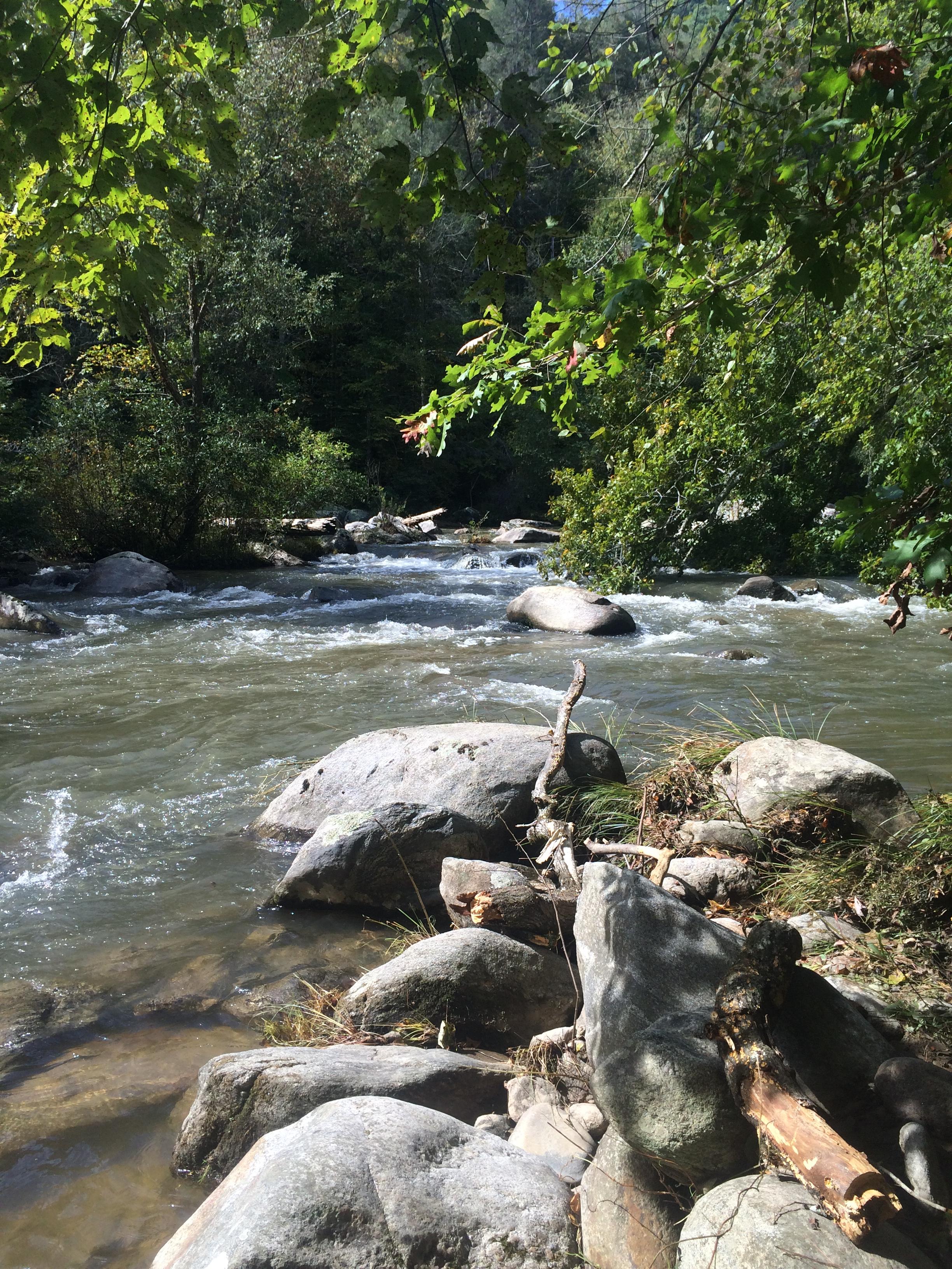 Green River Cove Trail