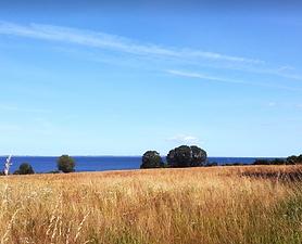 Ertebjerghav.PNG