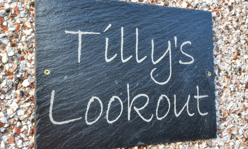 Tilly's Lookout37.jpg
