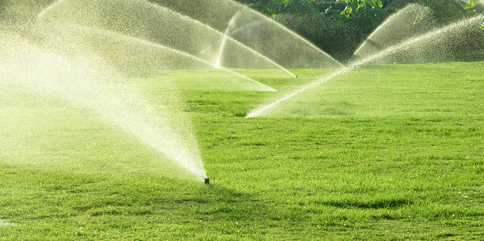 Irrigation System Watering the green gra