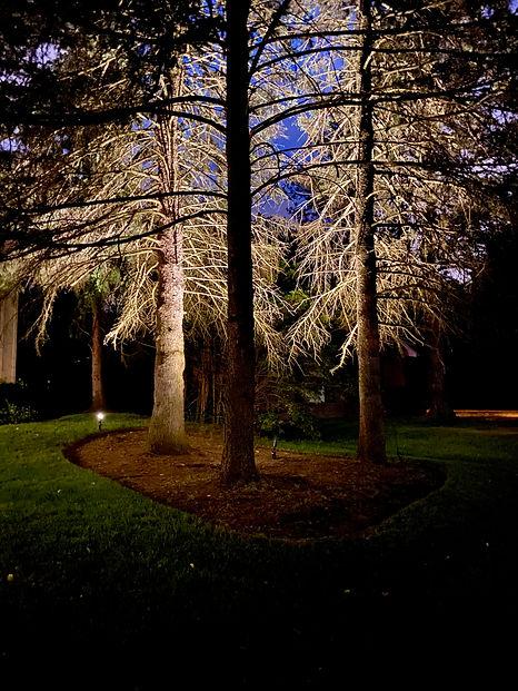 Apex Outdoor Systems, Landscape Lighting Toronto