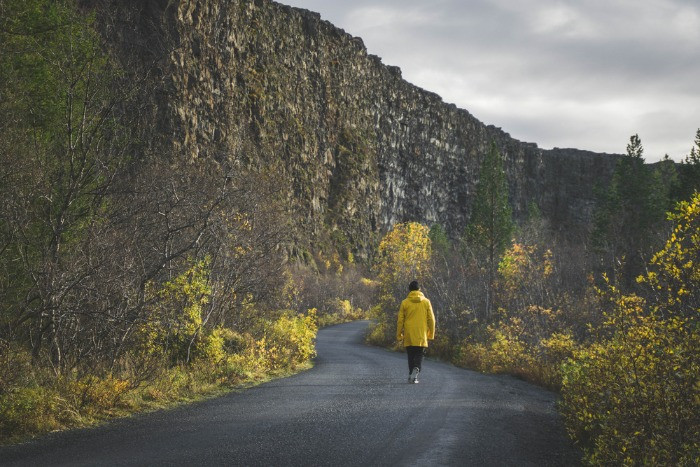 A tourist on a hiking trail in the Asbyrgi Canyon in Iceland in autumn