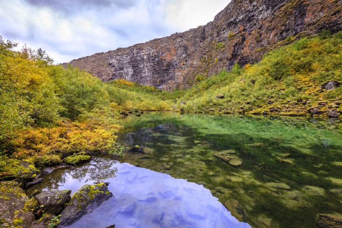 Picturesqua Botnstjorn lake in the Asbyrgi Canyon in Iceland