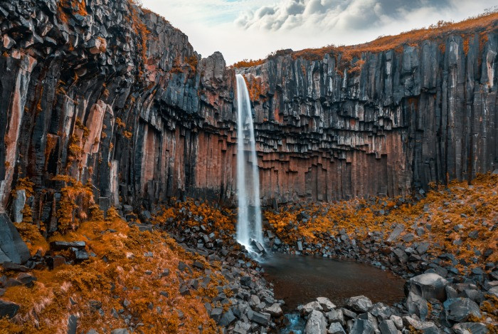 Svartifoss waterfall falling down the basalt rocks in an autumn scenery with plants covered in orange leafs