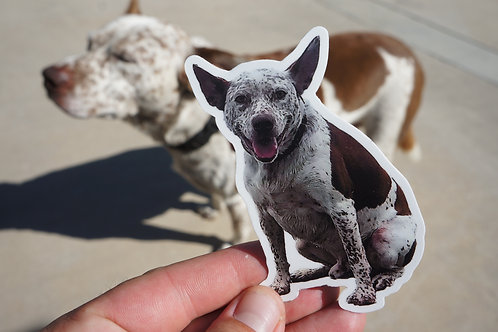 Wander The Doggy Color Stickers