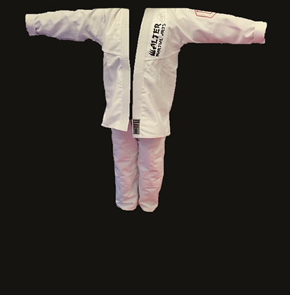 Jiu Jitsu Belt and Gi