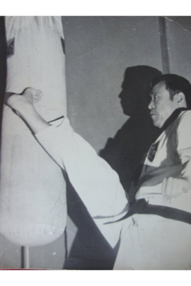Suh Chong Kang Reverse Roundhouse Kick