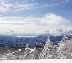 Ski 3   スキー3