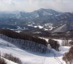 Ski スキー