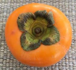 Persimmon 2 柿2