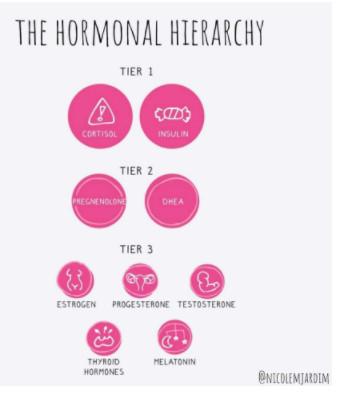 Nicole Jardin - Hormonal Hierarchy