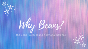 Why Beans? The Bean Protocol