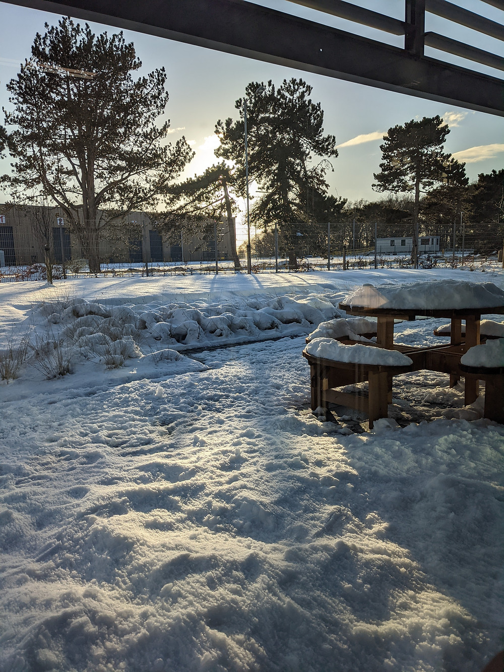 Snowy Ipswich