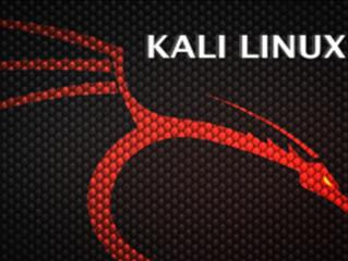 Kali Linux Libro Gratis