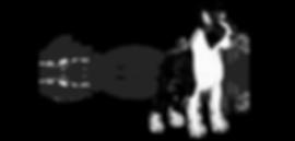 BW Club Logo_web.png