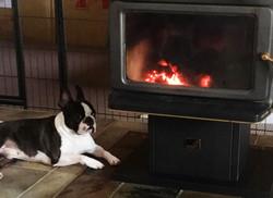 Best spot in winter