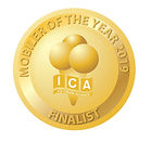 Ice Cream Alliance Award 2019 to Carnival Ices