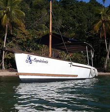 Barco 12 pessoas.jpg
