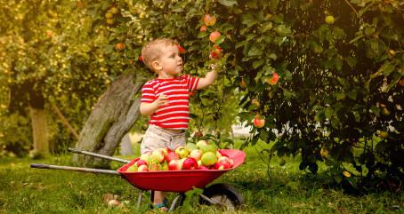 Les bonnes habitudes ces dès l'enfance !