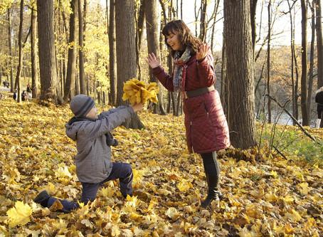3 activités automnale pour des sorties famille, en pleine nature.