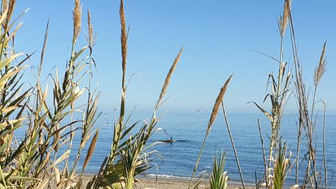Casares playa, Costa del Sol