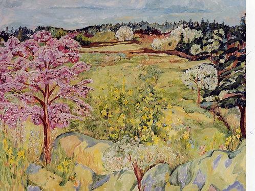 Original -Vancouver Island Spring Flowers No. 1