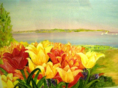 Tulips from White Rock Pier- sold- prints only