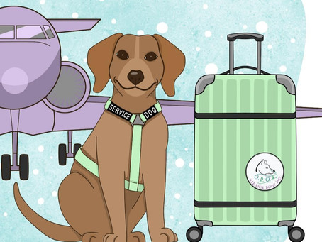 Tips for Traveling with a Service Dog during the Holidays