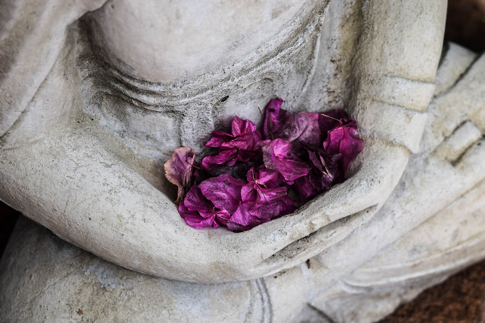 Statue in meditative pose, purple petals in arms.