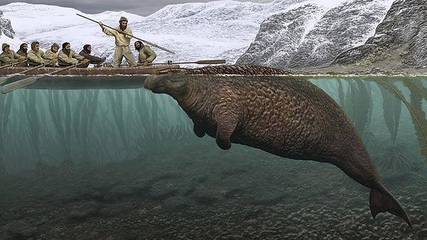 Steller's sea ape.jpg