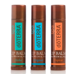 Lip Balm - 3-Pack מארז שלישיית דשפתוני לחות (4.5*3 גרם) - דוטרה