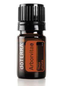 Arborvitae שמן אתרי תויה (5 מל) - דוטרה