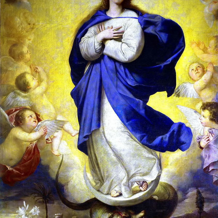 Mary Mother of God Mass (OF)