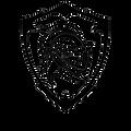 d edge knight logo.png