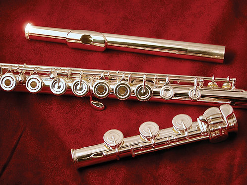 Di Zhao DZ700 Flute