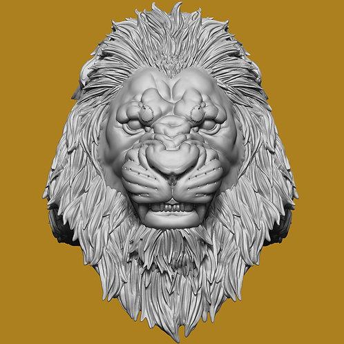 Angry King Haydar