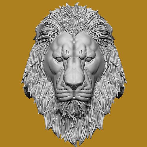 King Haydar