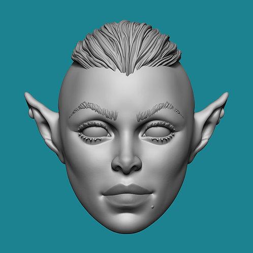 Elf Nambra Olagwyn V3