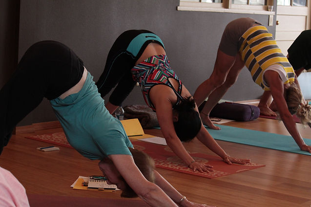 Private Yoga Sessions, Small Group Yoga