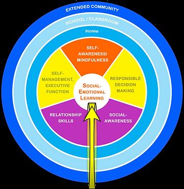 R-SEL Diagram(Sch)3.png