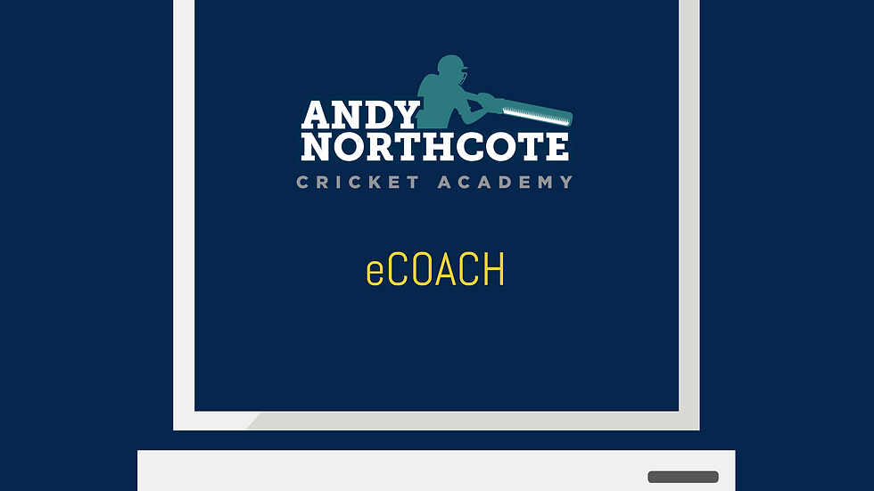 Interested in a tailored eCOACH plan?