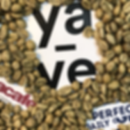 yave.io | blockchain coffee auction | pe