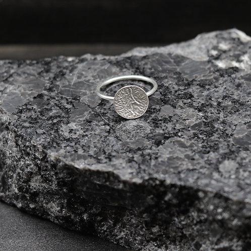 Revolve Ring