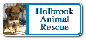 holbrook animal rescue.jpg