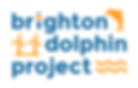 brighton dolphin project .png
