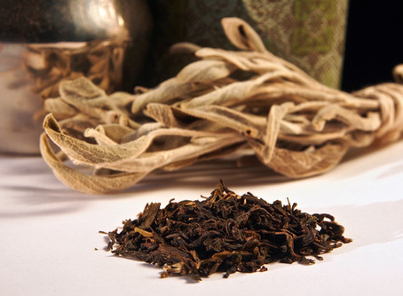 The Way of Tea – Part 3: Green Tea