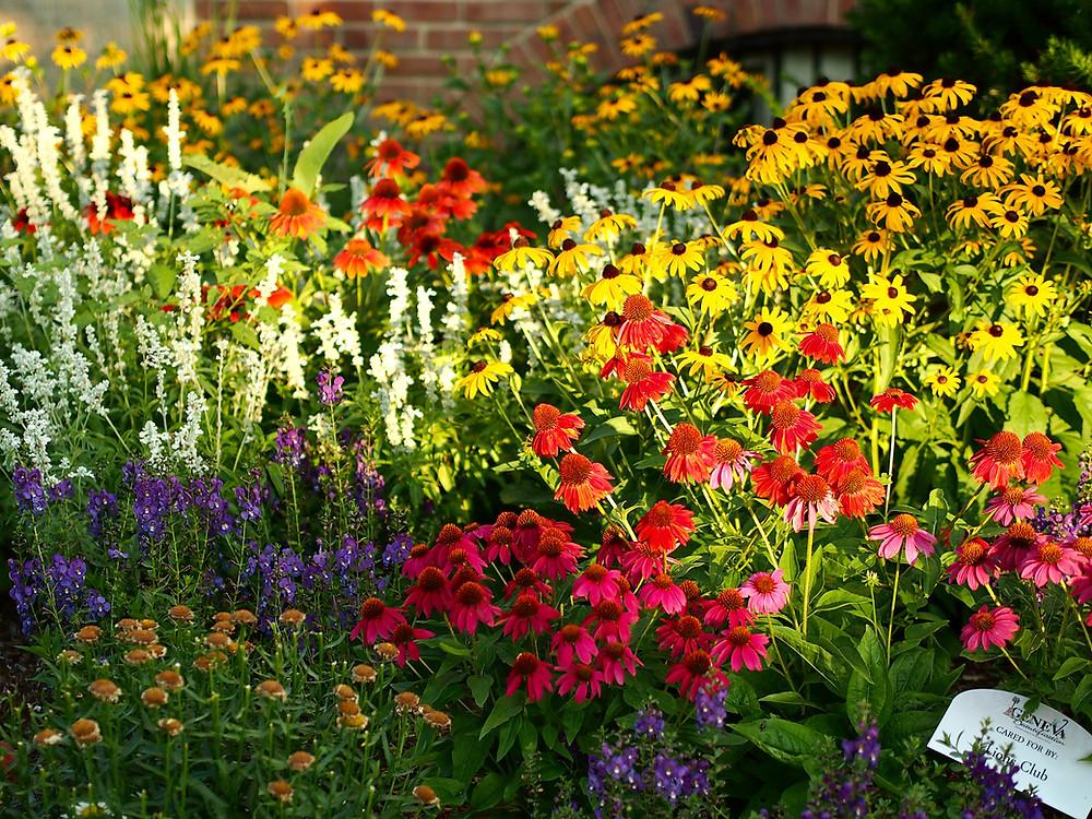 Geneva Beautification Gardens 2019, Photo: Spencer Schluter